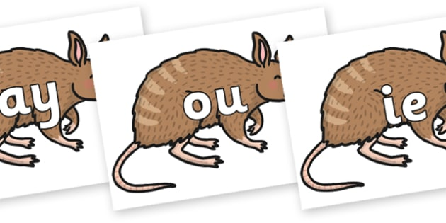 Phase 5 Phonemes on Bandicoot - Phonemes, phoneme, Phase 5, Phase five, Foundation, Literacy, Letters and Sounds, DfES, display