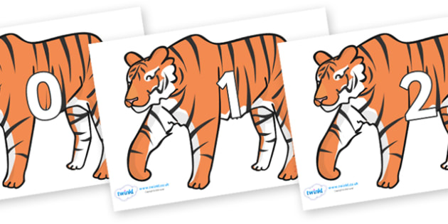 Numbers 0-31 on Tigers - 0-31, foundation stage numeracy, Number recognition, Number flashcards, counting, number frieze, Display numbers, number posters