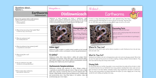 Earthworm Reading Comprehension English/Polish