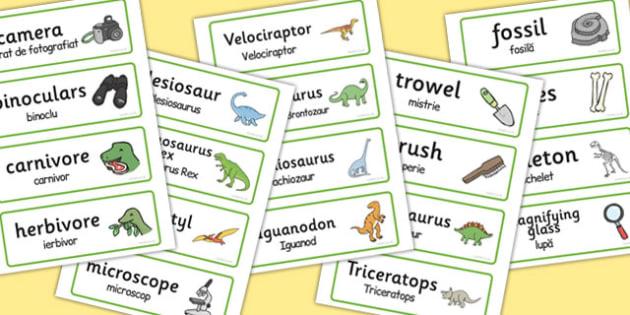 Dinosaur Museum Topic Word Labels Romanian Translation - romanian