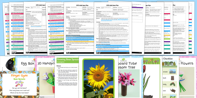 EYFS Plants and Growth Themed Adult Input Planning Pack - plan