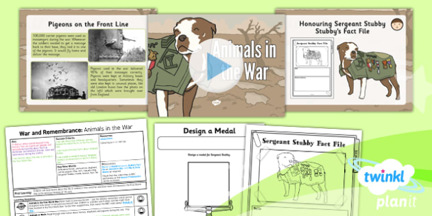 PlanIt - History KS1 - War and Remembrance Lesson 4: Animals in the War Lesson Pack