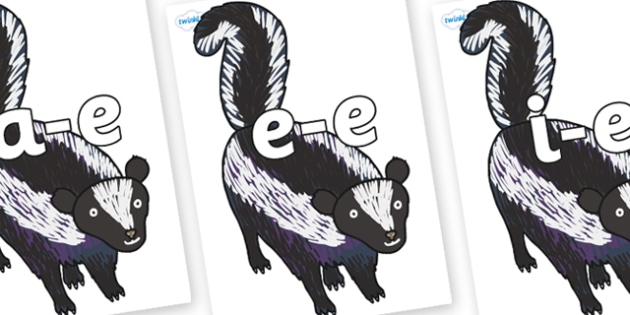 Modifying E Letters on Skunk to Support Teaching on The Bad Tempered Ladybird - Modifying E, letters, modify, Phase 5, Phase five, alternative spellings for phonemes, DfES letters and Sounds