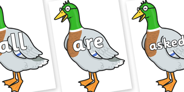 Tricky Words on Drakey Lakey - Tricky words, DfES Letters and Sounds, Letters and sounds, display, words