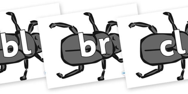 Initial Letter Blends on Beetles - Initial Letters, initial letter, letter blend, letter blends, consonant, consonants, digraph, trigraph, literacy, alphabet, letters, foundation stage literacy