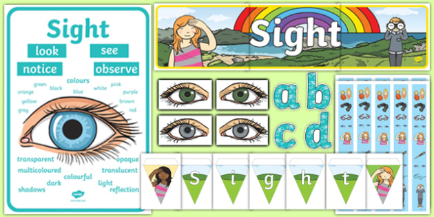 Sight Display Pack