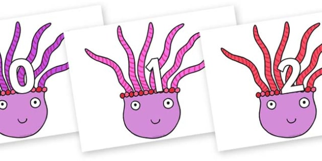 Numbers 0-31 on Anemone to Support Teaching on Sharing a Shell - 0-31, foundation stage numeracy, Number recognition, Number flashcards, counting, number frieze, Display numbers, number posters