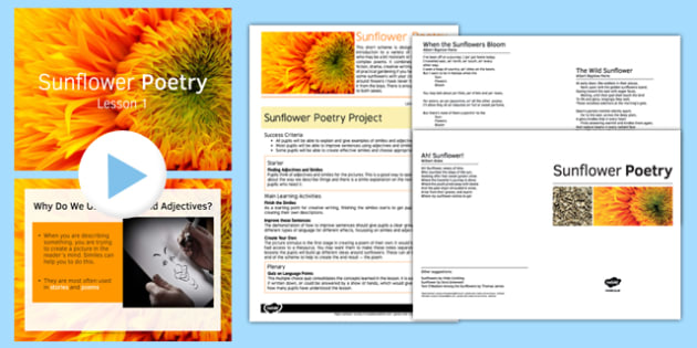 Sunflower Poetry Project Teaching Pack: Lesson 1 - poetry, lesson