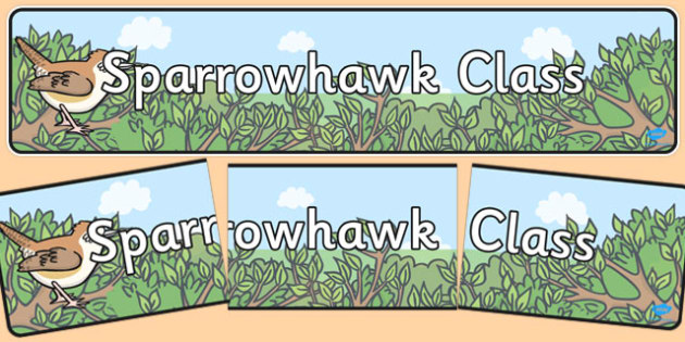 Sparrowhawk Class Display Banner - Classroom, birds, organisation, display, title