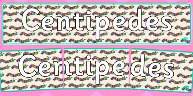 Centipedes Display Banner - centipedes, display banner, display