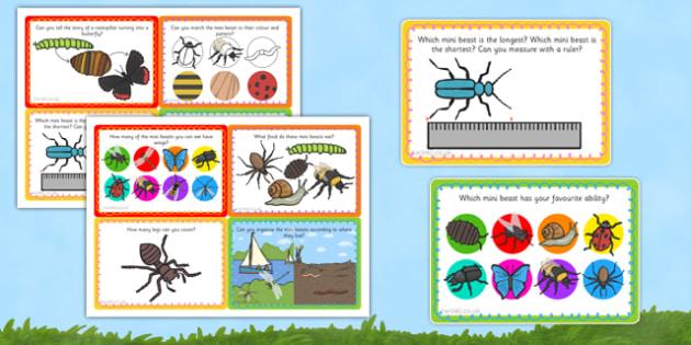 Mini Beast Investigation Lab Challenge Cards - minibeast, cards