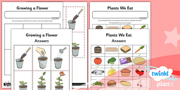 PlanIt - Science - Year 1 - Plants Unit: Home Learning Tasks