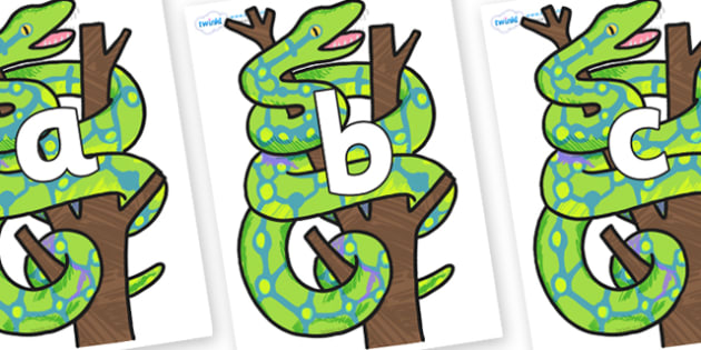 Phoneme Set on Boa Constrictor to Support Teaching on The Bad Tempered Ladybird - Phoneme set, phonemes, phoneme, Letters and Sounds, DfES, display, Phase 1, Phase 2, Phase 3, Phase 5, Foundation, Literacy