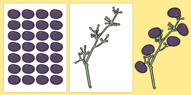 We're a Grape Bunch! Display Cut-Outs-Australia - End of Year,Back to School, Australia,back to school,display,grapes,