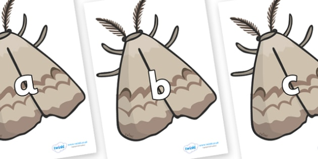 Phase 2 Phonemes on Moths - Phonemes, phoneme, Phase 2, Phase two, Foundation, Literacy, Letters and Sounds, DfES, display