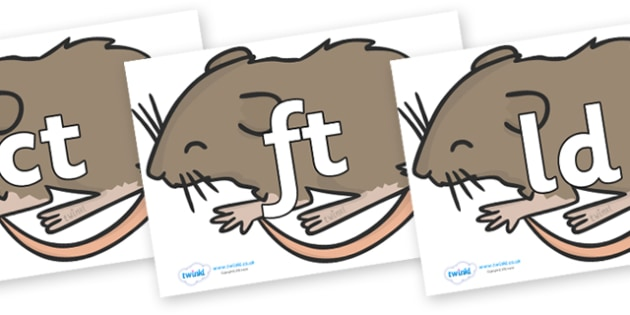 Final Letter Blends on Mice - Final Letters, final letter, letter blend, letter blends, consonant, consonants, digraph, trigraph, literacy, alphabet, letters, foundation stage literacy