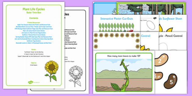 Plant Life Cycles Quiet Time Box