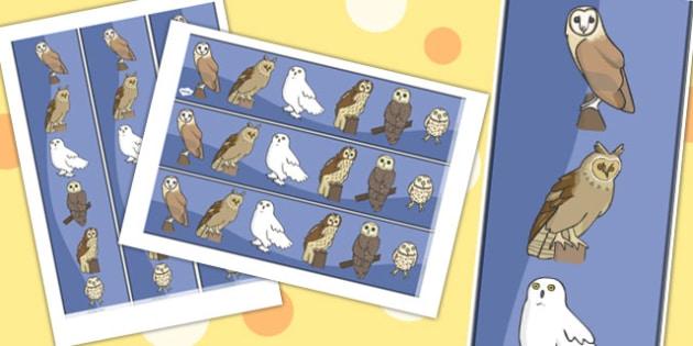 Owl Display Border - owl, night, display border, classroom border, border, nocturnal animal, bird, barn owl, eagle owl