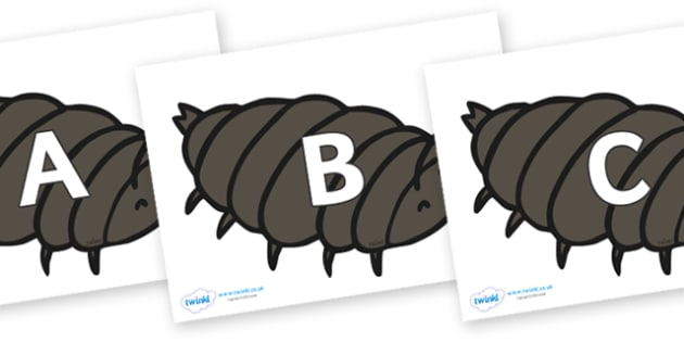 A-Z Alphabet on Woodlice - A-Z, A4, display, Alphabet frieze, Display letters, Letter posters, A-Z letters, Alphabet flashcards