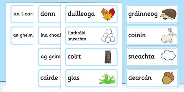 A Little Bit of Winter Vocabulary Gaeilge - roi, irish, gaeilge, a little bit, winter, vocabulary, Geimhreadh