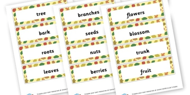 Trees - Trees, Themed Signs and Labels, Primary Resources