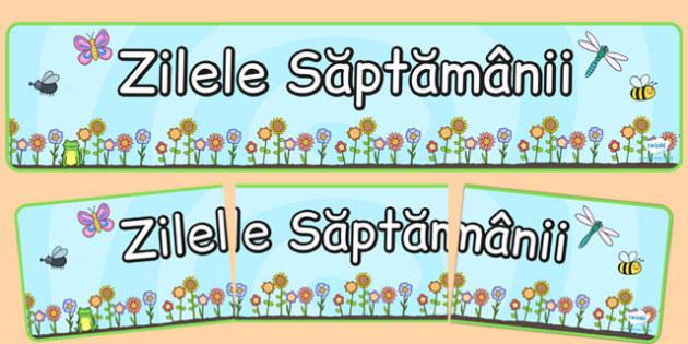 Banner, Zilele saptamanii - colorat, calendarul clasei