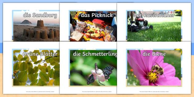 Summer German Display Photos