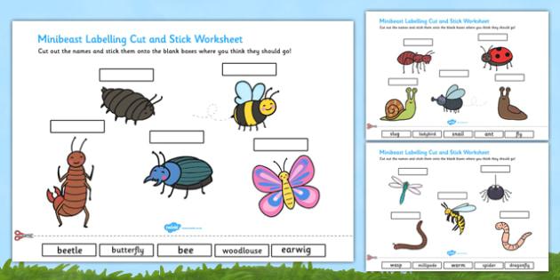Minibeasts Scene Labelling Cut and Stick Worksheet - minibeast