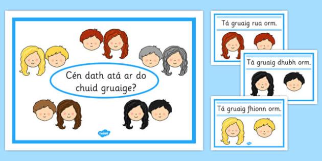 Hair Colour Posters Gaeilge - hair colour, posters, display, hair, colour, roi, irish