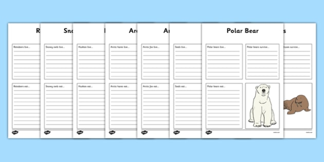 Polar Animals Factfile Activity Sheets - polar, animal, arctic, winter