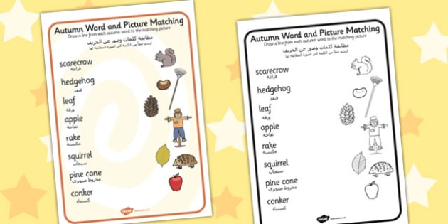 Autumn Word and Picture Matching Worksheet Arabic Translation - arabic