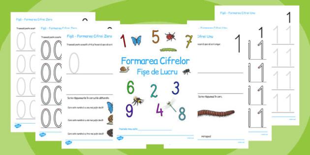 Minibeasts Themed 0-9 Number formation Workbook Romanian - romanian