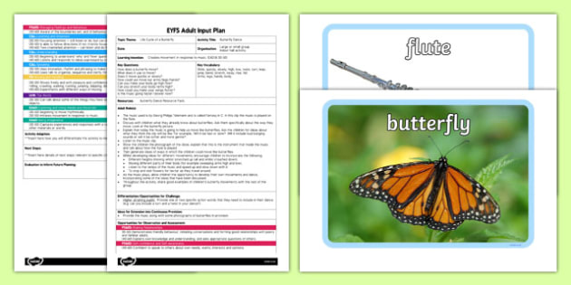 Butterfly Dance EYFS Adult Input Plan and Resource Pack - dance