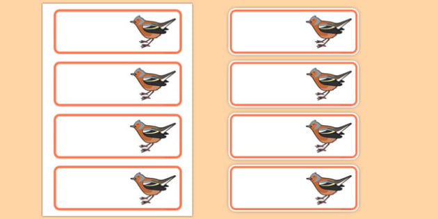 Chaffinch Editable Drawer Peg Name Labels - chaffinch, editable, drawer, peg, name, labels, display