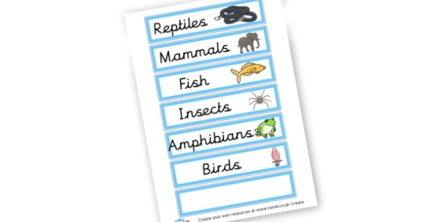 vocab cards types of animals - Primary Resources English, Literacy, Letters and Sounds, phonics