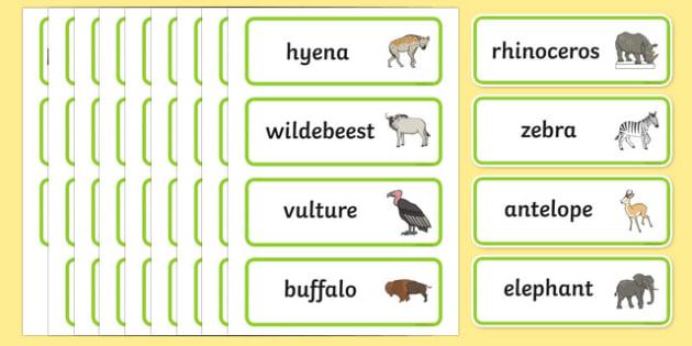 Africa Topic Word Cards - Africa, cards, flashcards, safari, lion, elephant, tiger, giraffe