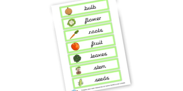 what part of a plant we eat - Reproduction Primary Resources, Green Plants, Plant Reproduction