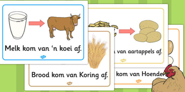 Afrikaans Where Does Food Come From?Display Posters - poster