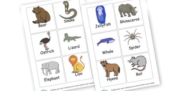 Animal Flashcards - Primary Resources English, Literacy, Letters and Sounds, phonics