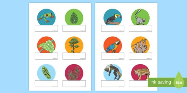 Rainforest Themed Editable Self-Registration - kapok tree, the great kapok tree, rainforest themed, editable, edit, self-registration