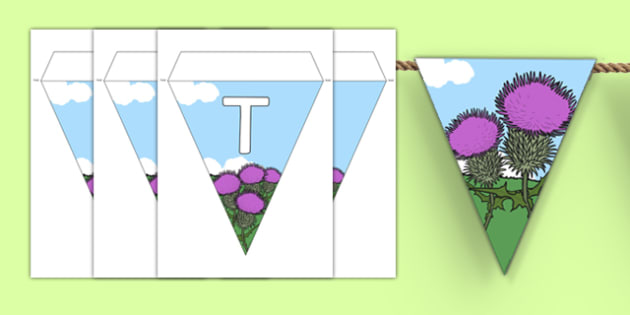 Thistle Class Display Bunting - thistle class, display bunting, display, bunting, thistle, class