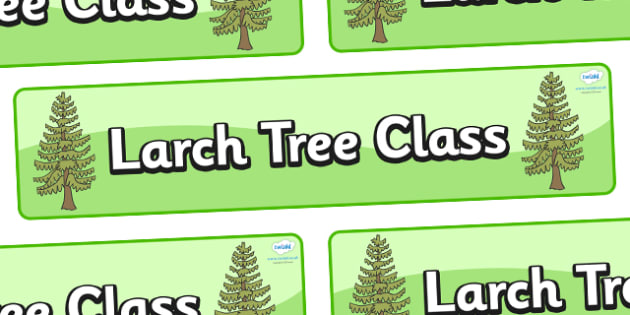 Larch Tree Themed Classroom Display Banner - Themed banner, banner, display banner, Classroom labels, Area labels, Poster, Display, Areas