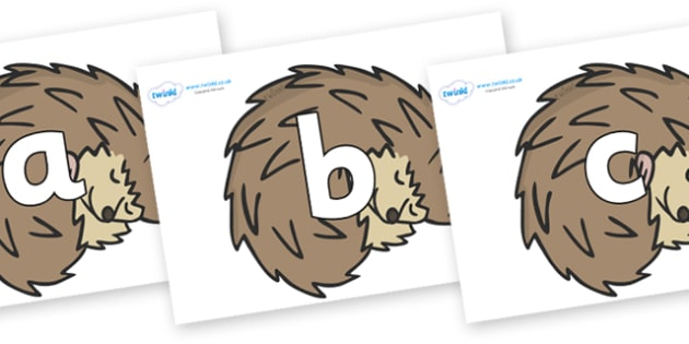 Phoneme Set on Hedgehogs - Phoneme set, phonemes, phoneme, Letters and Sounds, DfES, display, Phase 1, Phase 2, Phase 3, Phase 5, Foundation, Literacy