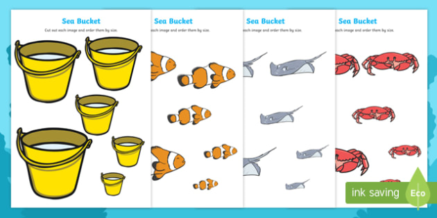 Sea Bucket Size Ordering - billy's bucket, sea bucket, size ordering, size, order, ordering