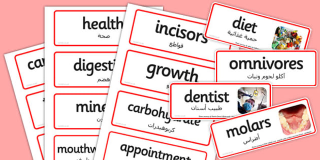 Teeth and Nutrition Word Cards Arabic Translation - arabic, cards
