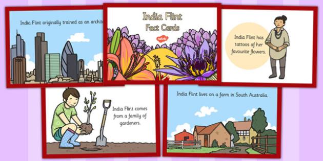 India Flint Fact Cards - india, flint, fact, cards, artist, art