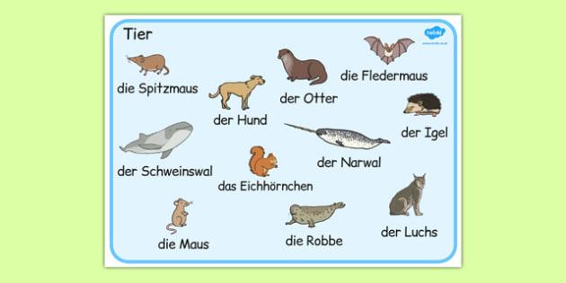 German Animals Word Mat -  animal, Germany, literacy, english