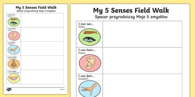 Five Senses Field Walk Activity Sheet Polish Translation-Australia-translation, worksheet