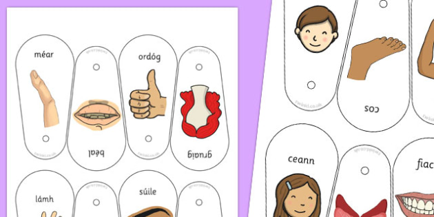 Parts of the Body Communication Fan Gaeilge - roi, irish, gaeilge, parts, body, parts of the body, communication, fan