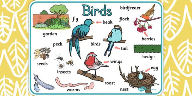 Bird Word Mat - bird, word mat, word, mat, birds, words, display